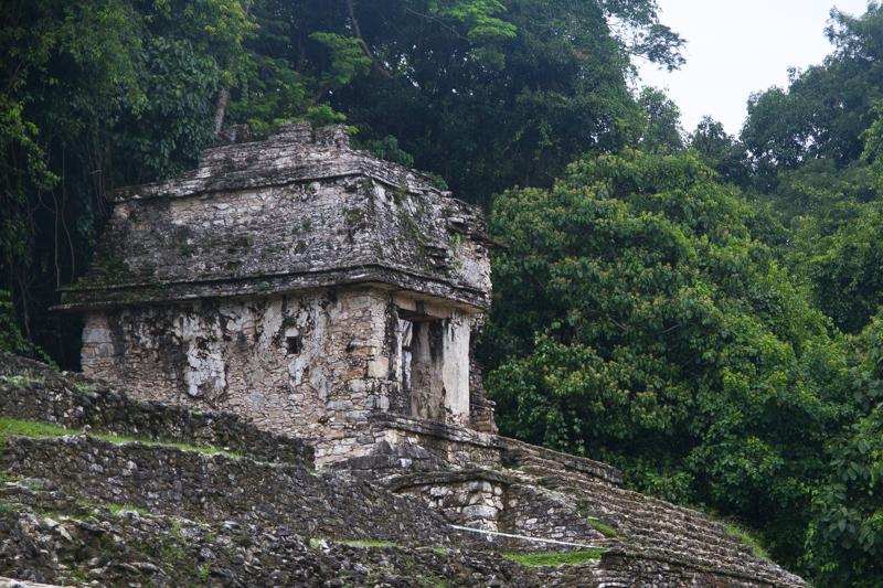 Palenque Messico -